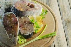 Pescados de mar crudos de los filetes Imagenes de archivo
