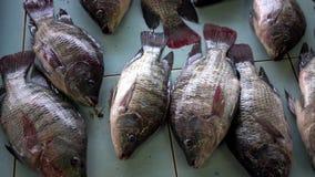 Pescados de mar frescos en el mercado contrario Mercado de los mariscos Pescados vendidos en la calle metrajes