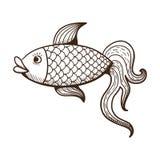 Pescados de oro Fotografía de archivo