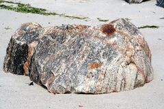 Pescados de piedra Foto de archivo