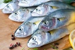 Pescados de Resh con las verduras, el condimento y el limón, pomátomo Preparación de alimento fotos de archivo