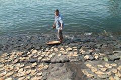 Pescados de sequía Imagenes de archivo