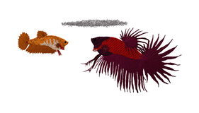 Pescados debajo de la jerarquía de la burbuja Imagen de archivo libre de regalías