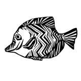 Pescados decorativos, en blanco y negro, gráfico de la mano, ornamento geométrico Imagenes de archivo