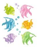 Pescados del color Imagen de archivo