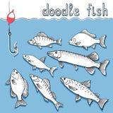 Pescados del garabato Imagen de archivo libre de regalías