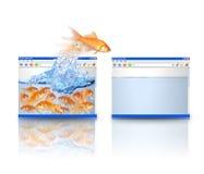 Pescados del oro que se mueven a un mejor Web site Fotografía de archivo
