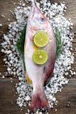 Pescados del pargo rojo del mercado de la industria pesquera Foto de archivo