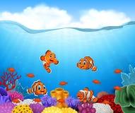 Pescados del payaso de la historieta en libre illustration