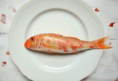 Pescados del salmonete rojo en una placa del blanco del vintage Imagen de archivo libre de regalías