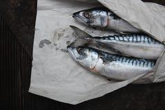 Pescados del Scomber en papel de embalaje Foto de archivo libre de regalías