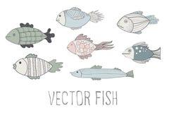 Pescados del vector Imagen de archivo libre de regalías