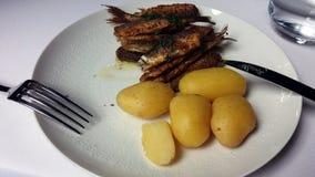 Pescados del vendace y nuevas patatas asados Fotos de archivo libres de regalías