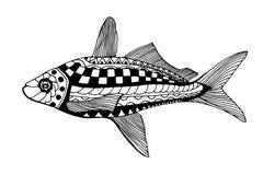 Pescados drenados mano ilustración del vector