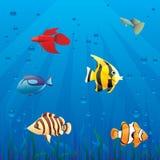 Pescados en el mar ilustración del vector