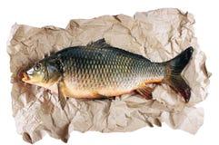 Pescados en el papel de embalaje Foto de archivo libre de regalías