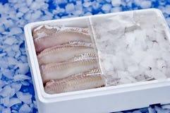 Pescados en hielo Fotos de archivo