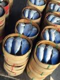 Pescados en la cesta de madera Fotografía de archivo