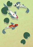Pescados en la charca Imágenes de archivo libres de regalías