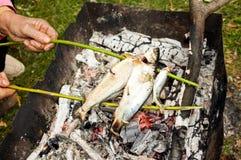 Pescados en los carbones del fuego imágenes de archivo libres de regalías