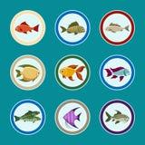 Pescados en los iconos de la placa fijados stock de ilustración