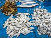 Pescados en mercado Imagenes de archivo