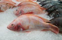 Pescados en mercado Fotografía de archivo