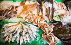 Pescados en mercado de pescados Imagen de archivo