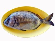 Pescados en placa amarilla Foto de archivo libre de regalías