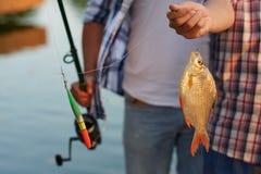 pescados en un gancho de leva Foto de archivo