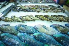 Pescados en un mercado Fotografía de archivo libre de regalías