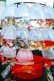 Pescados en un paquete imagen de archivo