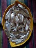 Pescados en una bandeja de la hoja Foto de archivo libre de regalías