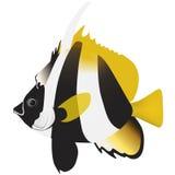Pescados enmascarados de la bandera Imágenes de archivo libres de regalías