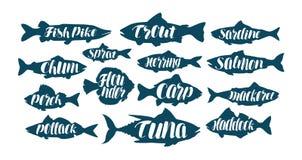 Pescados, etiquetas de la colección o logotipos Mariscos, comida, pesca, iconos determinados que pescan con caña Letras manuscrit ilustración del vector