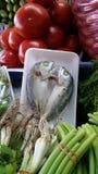 Pescados felices Foto de archivo