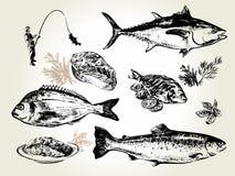 Pescados fijados dibujados Imágenes de archivo libres de regalías