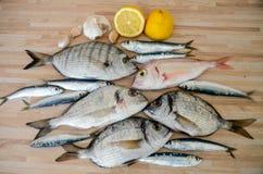 Pescados frescos con el limón listo para cocinar Preparación de la comida deliciosa y sabrosa de los mariscos Brema de mar cruda  fotografía de archivo libre de regalías