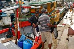 Pescados frescos de cogida en el puerto de Matara en Sri Lanka imágenes de archivo libres de regalías
