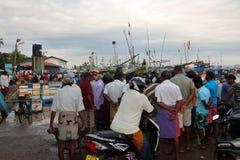 Pescados frescos de cogida en el puerto de Matara en Sri Lanka fotografía de archivo libre de regalías