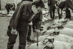 Pescados frescos de la inspección del comprador de la subasta del atún en el mercado de Tsukiji en Tokio foto de archivo