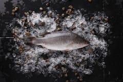 Pescados frescos en el hielo en una opinión de sobremesa de piedra negra Fotos de archivo