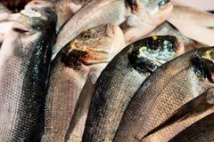 Pescados frescos en la exhibición del mercado Fotografía de archivo