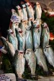 Pescados frescos en mercado de pescados Imágenes de archivo libres de regalías