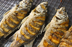 Pescados fritos Foto de archivo