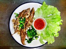Pescados fritos Imagen de archivo libre de regalías