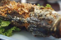Pescados fritos con ajo y pimienta Imagen de archivo libre de regalías