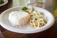 Pescados fritos con arroz Imagenes de archivo
