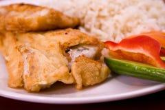 Pescados fritos con arroz Foto de archivo libre de regalías
