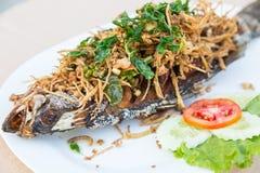 Pescados fritos con la hierba tailandesa Foto de archivo libre de regalías